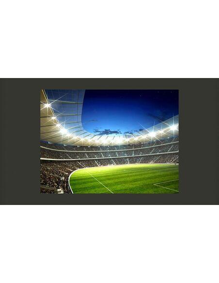 Papier Peint Stade National  Sport Artgeist