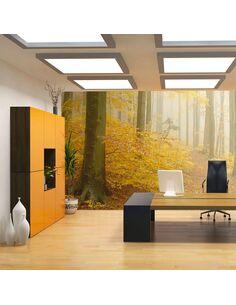Papier Peint Forêt Automne  Arbres et Forêt Artgeist