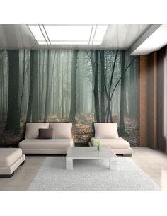 Papier Peint Witches' Forest  Arbres et Forêt Artgeist