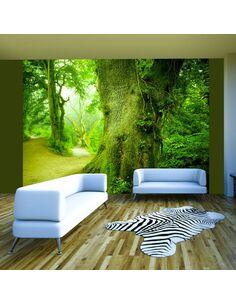 Papier Peint Chemin Forestier  Arbres et Forêt Artgeist
