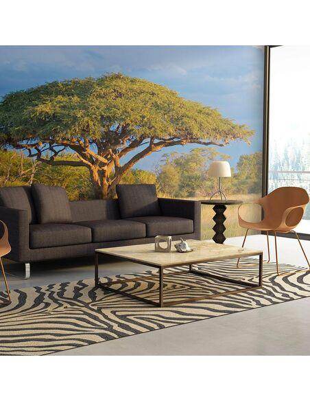 Papier peint ACACIA AFRICAIN PARC NATIONAL HWANGE, ZIMBABWE - par Artgeist