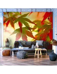 Papier peint FEUILLES COLORÉES - par Artgeist