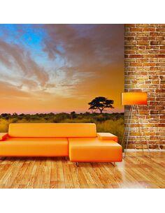 Papier peint SOUTH AFRICAN SUNSET - par Artgeist