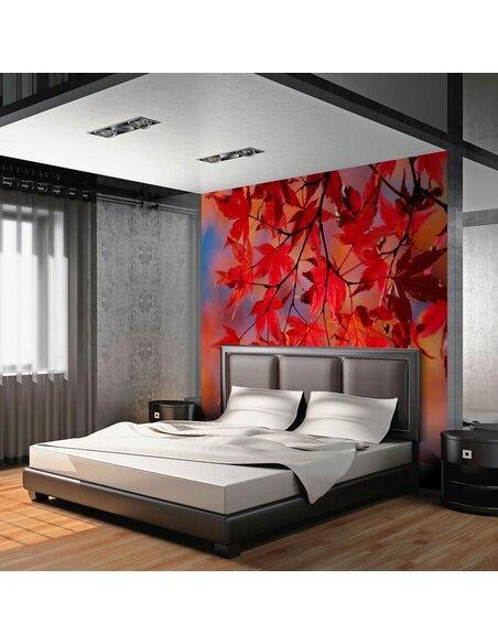 Papier peint RED JAPANESE MAPLE - par Artgeist