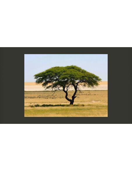 Papier peint ETOSHA NATIONAL PARK, NAMIBIA - par Artgeist