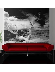 Papier peint ARBRE AU GRAND CANYON, ARIZONA - par Artgeist