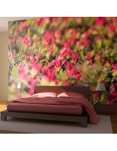 Papier peint AZALÉE JAPONAISE, FLEURS ROSES - par Artgeist