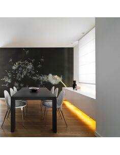 Papier peint GRAINES DE DENT-DE-LION EMPORTÉES PAR LE VENT - par Artgeist