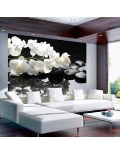 Papier Peint Spa, Pierres Et Orchidée  Orchidées Artgeist