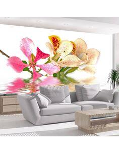 Papier Peint Fleurs Tropicales Arbre Aux Orchidées (Bauhinia)  Orchidées Artgeist