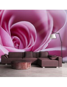 Papier peint ROSE ROSE - par Artgeist