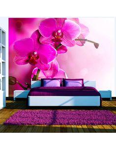 Papier Peint Orchidée Rose  Orchidées Artgeist