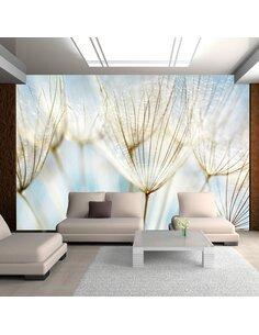 Papier peint FOND ABSTRAIT GRAINES DE PISSENLIT - par Artgeist