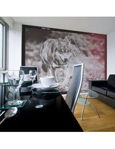 Papier peint LOUP PHOTOGRAPHIE - par Artgeist