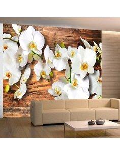 Papier peint SNOW-WHITE ORCHIDS - par Artgeist