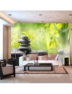 Papier peint SERENITY OF NATURE - par Artgeist