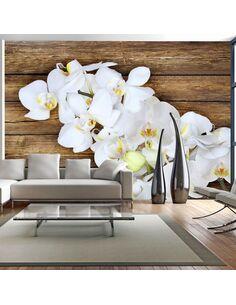 Papier Peint Delicacy On Wood  Orchidées Artgeist