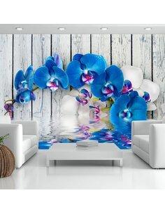 Papier Peint Cobaltic Orchid  Orchidées Artgeist