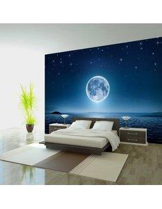 Papier peint MOONLIT NIGHT - par Artgeist