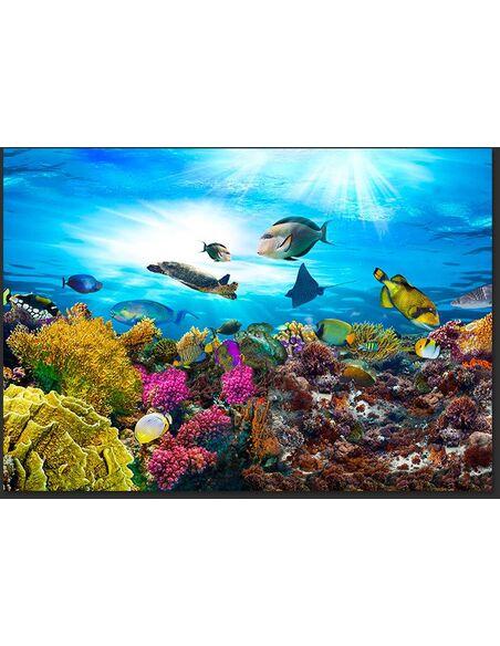 Papier Peint Coral Reef  Mer Artgeist