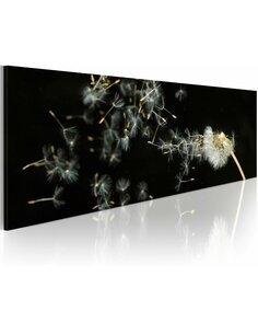 Tableau Panoramique - Impermanence Fleurs variées Artgeist