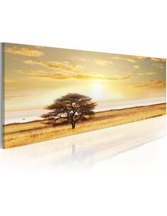 Tableau LONELY TREE ON SAVANNAH - par Artgeist