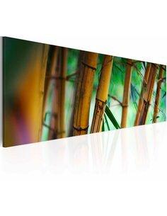 Tableau Panoramique - Wild bamboos Zen Artgeist