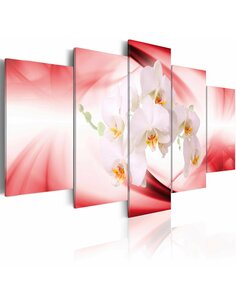 Tableau - 5 tableaux - Orchidée sur le fond rose et blanc - par Artgeist