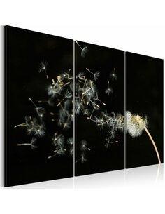 Tableau Triptyque - Pissenlit - fugacité du moment Fleurs variées Artgeist