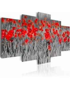 Tableau - 5 tableaux - Coquelicots rouges parmi les céréales - par Artgeist