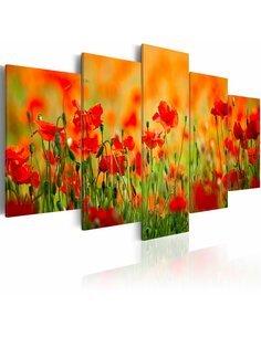 Tableau - 5 tableaux - Coquelicots aux couleurs vives - par Artgeist