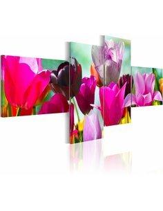 Tableau - 4 tableaux - Charme des coquelicots roses Tulipes Artgeist