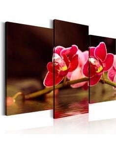 Tableau Orchidée Au Lac  - par Artgeist