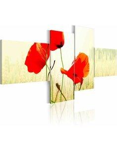 Tableau - 4 tableaux - Coquelicots au soleil - par Artgeist