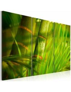 Tableau Triptyque - Le vert vif des forêts tropicales Zen Artgeist