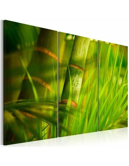 Tableau Triptyque - Le vert vif des forêts tropicales - par Artgeist
