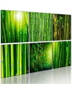 Tableau - 4 tableaux - Nombreux visages du bambou Zen Artgeist