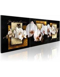 Tableau Panoramique - Chic and elegance - par Artgeist