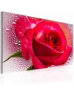 Tableau Lady Rose  - par Artgeist