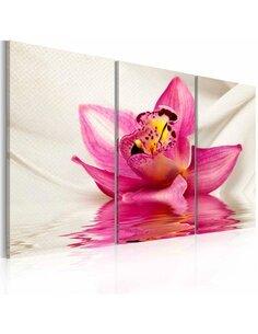 Tableau Triptyque - Unusual orchid - triptych - par Artgeist