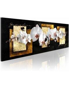 Tableau Panoramique - Composition peaufinée avec l'orchidée - par Artgeist