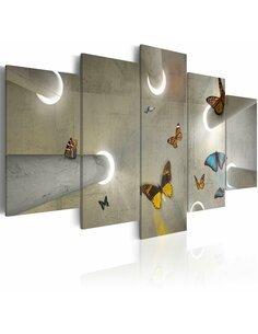 Tableau - 5 tableaux - Papillons - par Artgeist