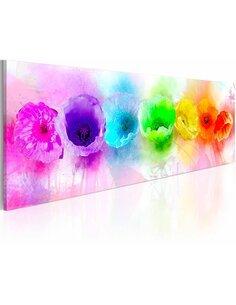 Tableau Panoramique - Rainbow-hued poppies - par Artgeist