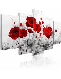 Tableau - 5 tableaux - coquelicots - rouge miracle Coquelicots Artgeist