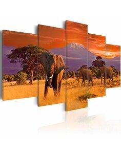 Tableau AFRIQUE: ÉLÉPHANTS - par Artgeist