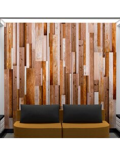 Papier Peint Brown Relaxation  Papiers peints Deko Panels Artgeist