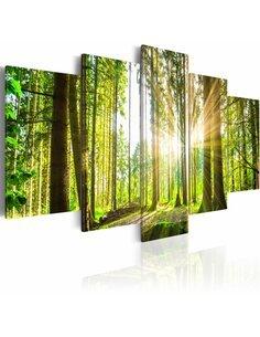 Tableau FOREST KINGDOM - par Artgeist