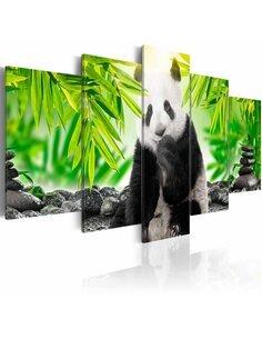 Tableau SWEET LITTLE PANDA - par Artgeist