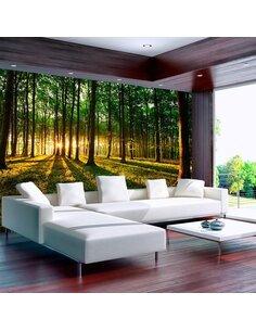 Papier peint SPRING: MORNING IN THE FOREST - par Artgeist