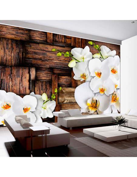 Papier peint BLOOMING ORCHIDS - par Artgeist